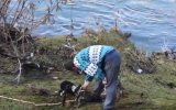 İyi Kalpli İnsanların Zor Durumda Kalan Hayvanlara Yardım Etmesi