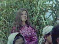 Kalbimin Sahibi - Zeki Müren & Sema Özcan (1969 - 85 Dk)