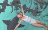 Köpek Balıkları İle Birlikte Yüzen Cesur Hatun