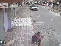 Oturan Adamın Sırtına İşeyen Köpek - Brezilya