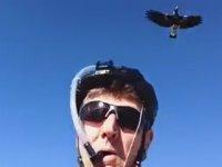 Bisikletçi İle Kuşun Dalga Geçmesi