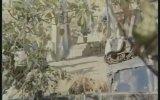 Bir Araya Gelemeyiz  Orhan Gencebay & Hülya Koçyiğit 1975  90 Dk