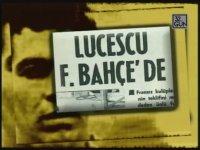 Lucescu'nun Yıllar Önce Fenerbahçe Forması Giymesi