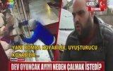 Peluş Ayı Çalan Hırsız  İstanbul