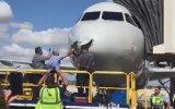 Havada Uçak ile Çarpışan Kuşun Gövdeyi Delmesi