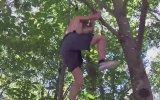 Gerçek Hayattaki Tarzan