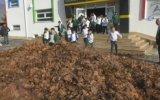 Bir Kamyon Yaprak ile Öğrencilerine Sonbaharı Uğurlatan Müdür