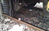 Trenin Çakıl Taşı Üzerindeki Etkisi