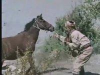 Dövüşe Dövüşe Öldüler - Serdar Gökhan & Aysun Güven (1974 - 78 Dk)