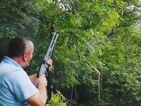 Tüfekle Ağaç Budayan Belediye Çalışanı