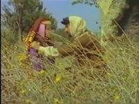 Meyro - Ünsal Emre & Meral Zeren (1973 - 83 Dk)