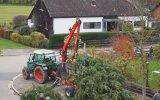 Almanya Usulü Ağaç Kesmek