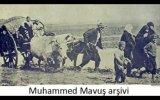 Fatma Türkan Yamacı  Yaş Nane Kuru Nane