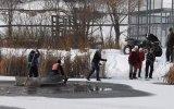 Donmuş Göldeki Geyiği Kurtarmak  Kanada