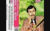 Aşık Ali Bedir  Kedi Kardaş