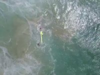 Drone ile Kurtarma Operasyonu - Avustralya
