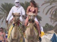 Dubai Plajlarında Deveye Binmek