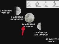 Gün, Hafta, Ay, Yıl Kavramları Nasıl Oluştu? - Evrim Ağacı