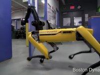 Boston Dynamics'in Yapay Zekalı ve Kibar Sarı Robotu
