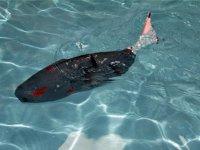 Türk Mühendislerin Ürettiği Akıllı Robot Balık