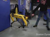 Robotu Örseleyen Acımasız Boston Dynamics Çalışanları