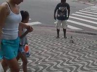 Sokakta Adam Kovalayan Güvercin - Brezilya