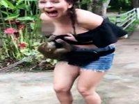 Turist Kızın Memelerini Elleyen Arsız Maymun