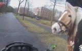 1 Beygirin 10 Beygirlik Motordan Kaçması