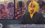 Tavuk Kostümüyle Seçim Konuşması  Macaristan