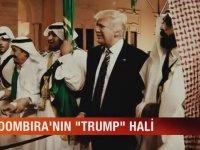 Dombra'nın Trump Hali