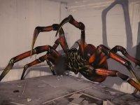 3D Örümcek (Graffiti)