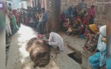 Yılanın Isırdığı Eşini İnek Dışkısına Gömerek Öldüren Adam
