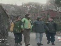 5 Maymun Çetesi - 1. Bölüm (1999)
