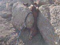 Kaya Arasına Sıkışmış Atı Kurtaran Güzel İnsan
