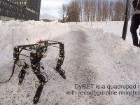 Dört Ayaklı Kendi Başına Yürüyebilen ve Öğrenen Robot