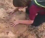 Ağacı Kesildiği İçin Ağlayan Çocuk
