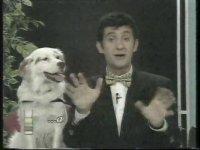 Hugo Tanıtım (1993 - Kanal6)