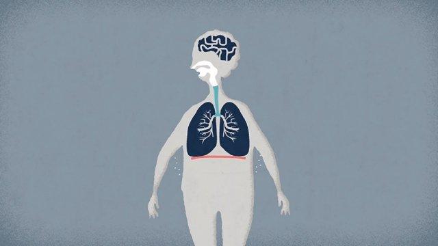 Akciğerler Ne Işe Yarar Video Alkışlarla Yaşıyorum