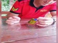İtfaiye Erinin Susayan Kuşa Kapakla Su İçirmesi