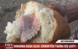 Ekmekten Takma Diş Çıkması