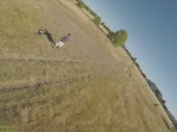 Drone'un Düşüp Alev Almasına Neden Olan Köpekler