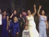 Hisli Bozkurtların Düğünü