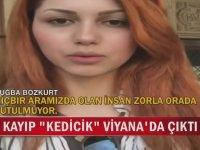 Viyana'da Ortaya Çıkan Kayıp Kedicik Tuğba Bozkurt