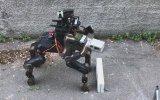 Kareteci Robot Centauro