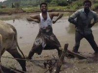 Kiki Challenge Akımına Son Noktayı Koyan Hintliler
