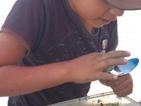 Sokak Sanatçısı Çocuk - Meksika