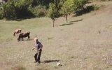 Drone Gören Masum Köylü