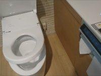 90 Bin TL'ye Satılan Tuvalet
