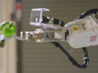 Tamamen Robotlar Yönetiminde Olan Çiftlik