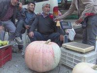 55 Kiloluk Kabağıyla İlgi Çeken Pazarcı